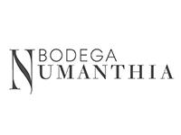 LVMH ワイン&スピリッツ ボデガ ヌマンシア Bodega Numanthia